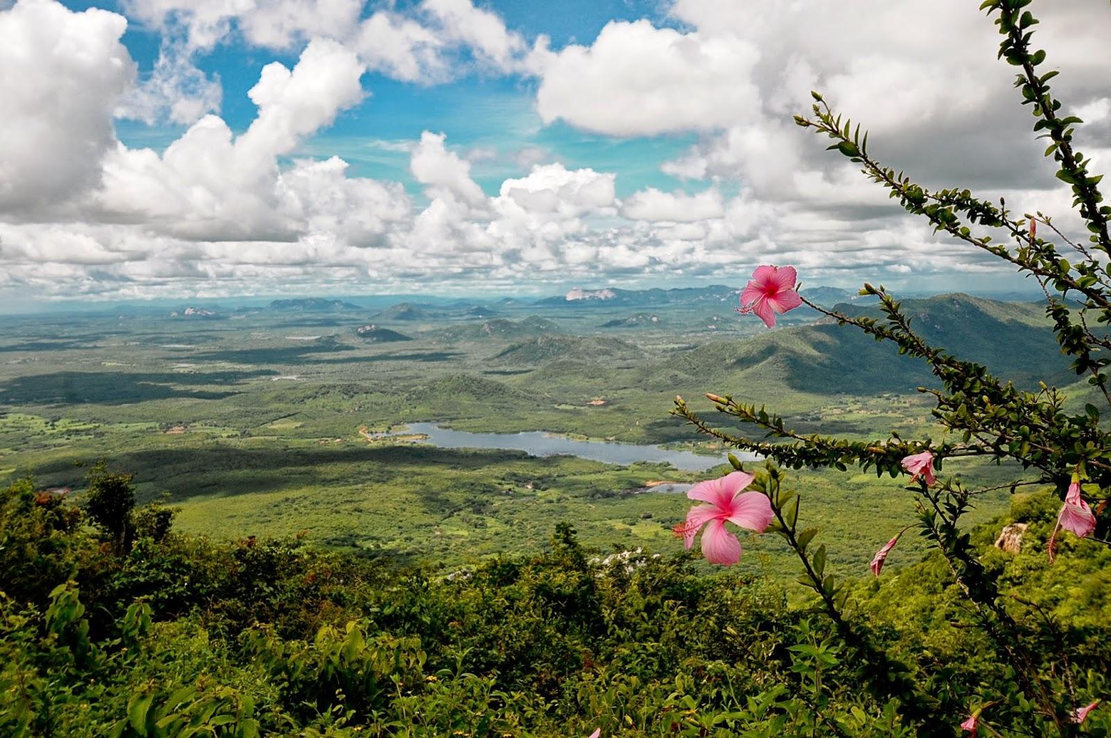 Serras potiguares: 15 paraísos que você precisa conhecer!